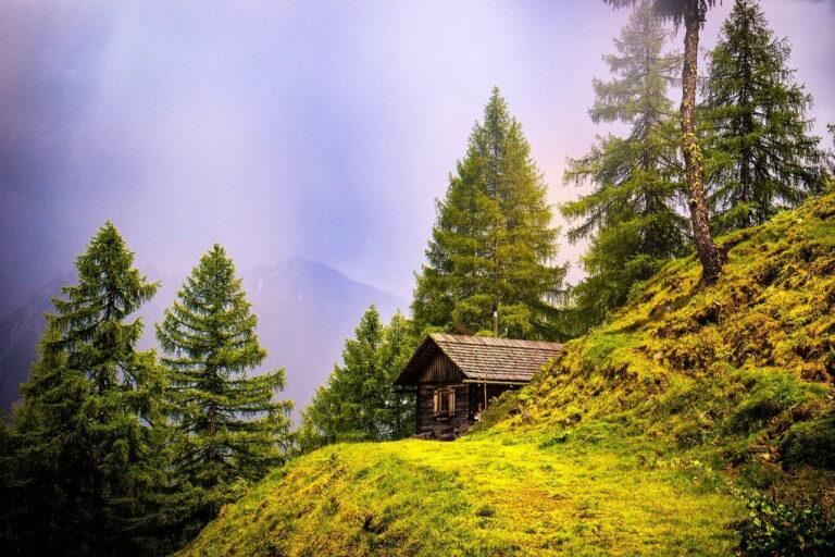 Mały domek z drewna pod miastem. Jak to ogrzewać?